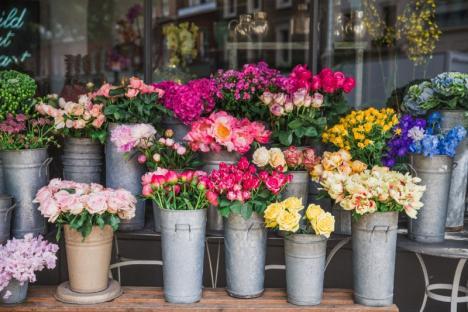 Boutique de fleurs Roncq