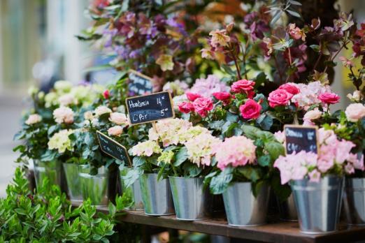 Livraison de fleurs à domicile Roncq